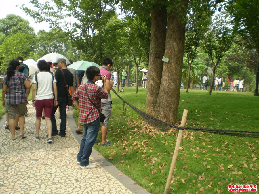 齐生设计职业学校2011年7月校外学习2