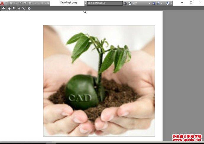 CAD插入光栅图像的边框怎么去掉?