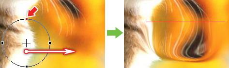 PS新手入门教程第93课:PS液化滤镜的用法